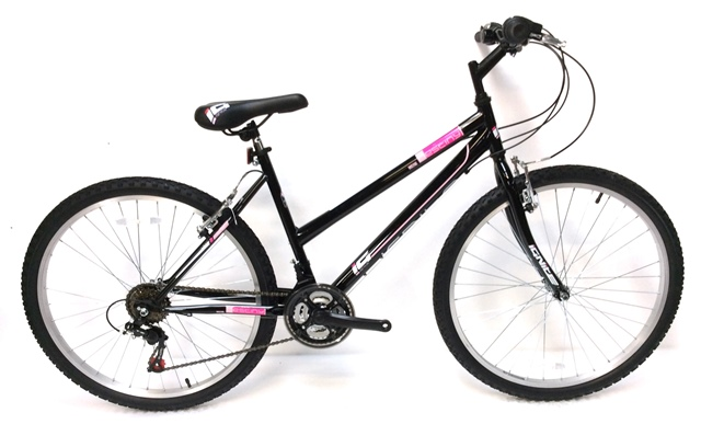 Destiny Ladies Mountain Bike